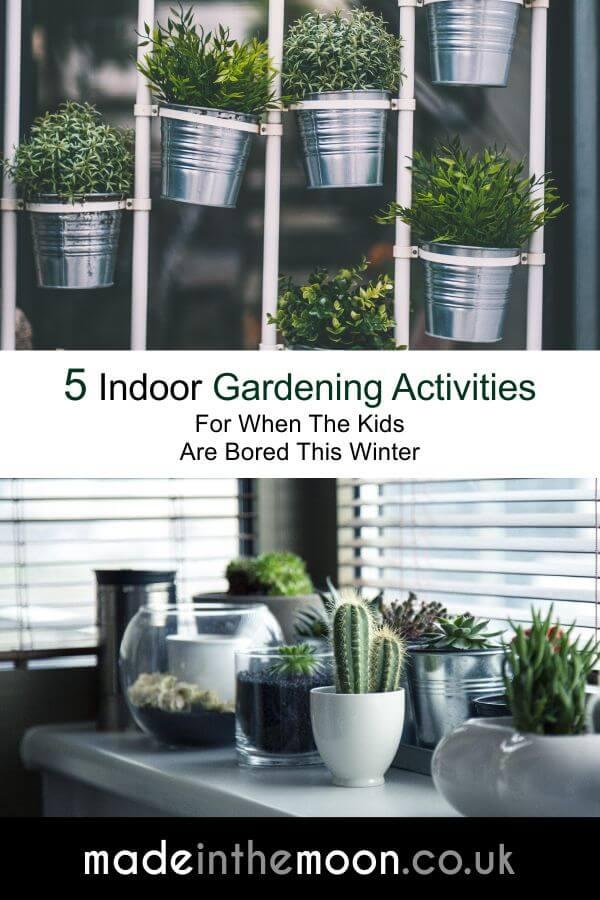 Pinterest 5 Indoor Gardening Activities
